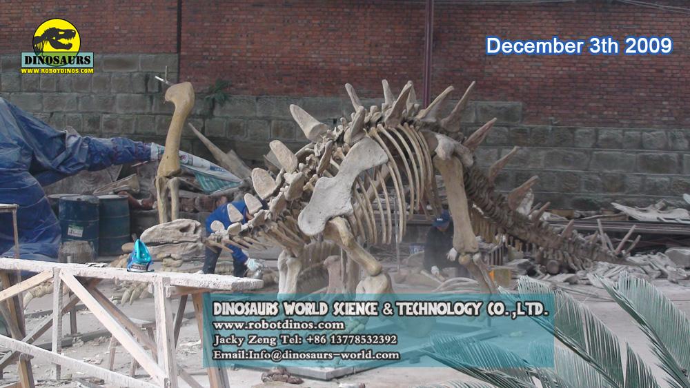 Stegosaurus Skeleont Replica