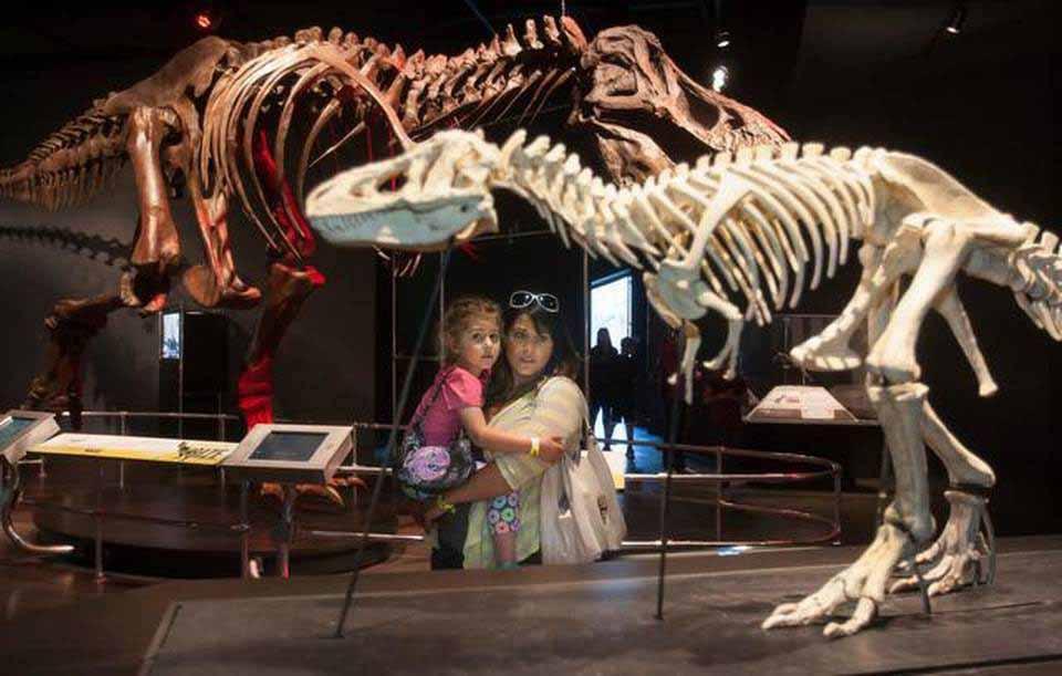 prairiefire dinosuars metro 03212015 spf 0028f
