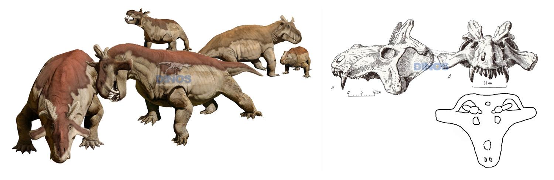 animatronic Estemmenosuchus,animatronic dinosaurs,prehistorical animals,prehistoric animals,museum quality dinosaur,museum dinosaur skeleton factory