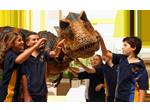 Trajes de dinossauro