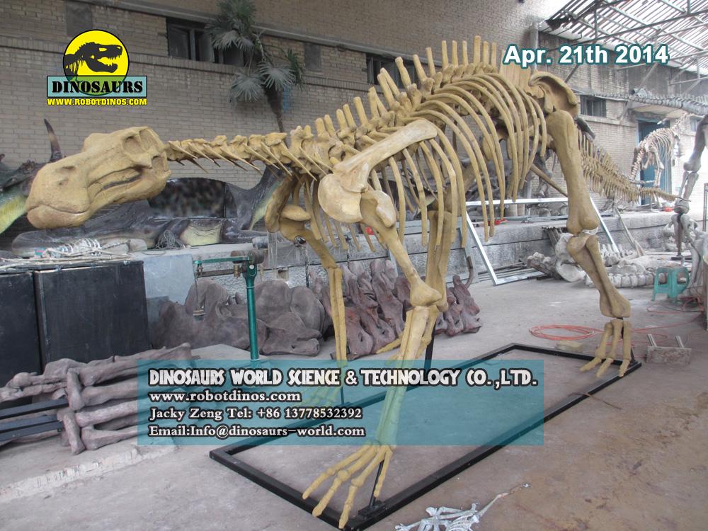 Life Size Dinosaur Skeleton Replica Hadrosaurs