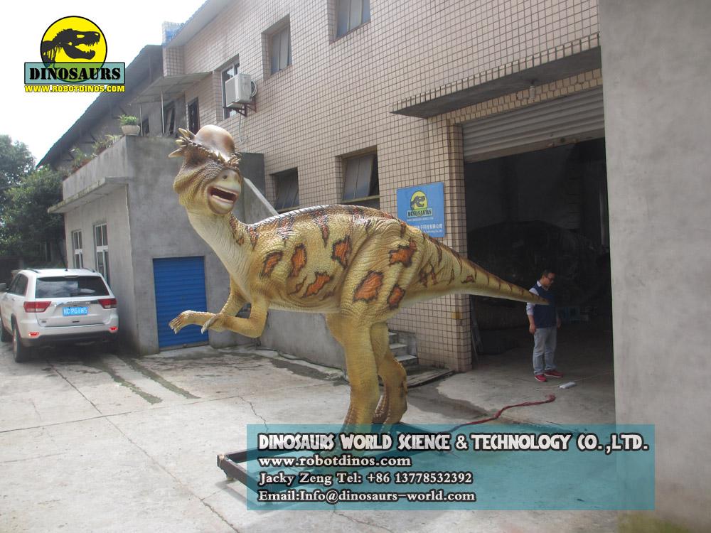 Dinosaur Supplier Pachycephalosaurus