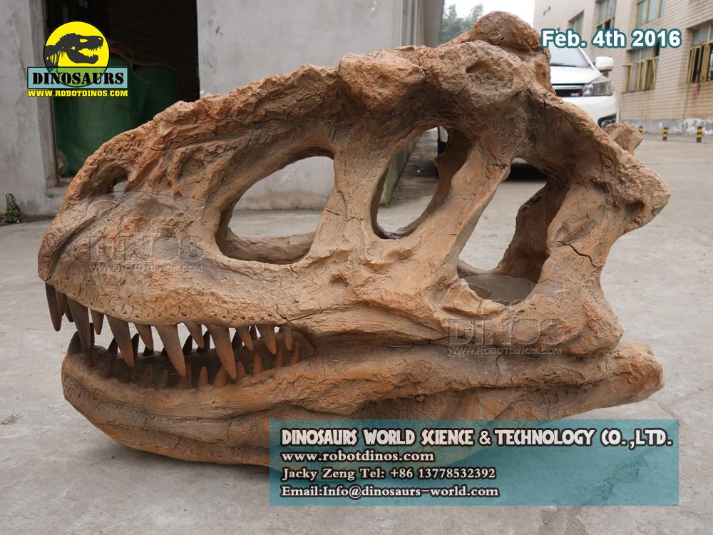 Dinosaur Fossils Replica