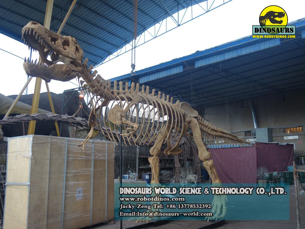 DWS016-1-T-Rex-Esqueleto-1