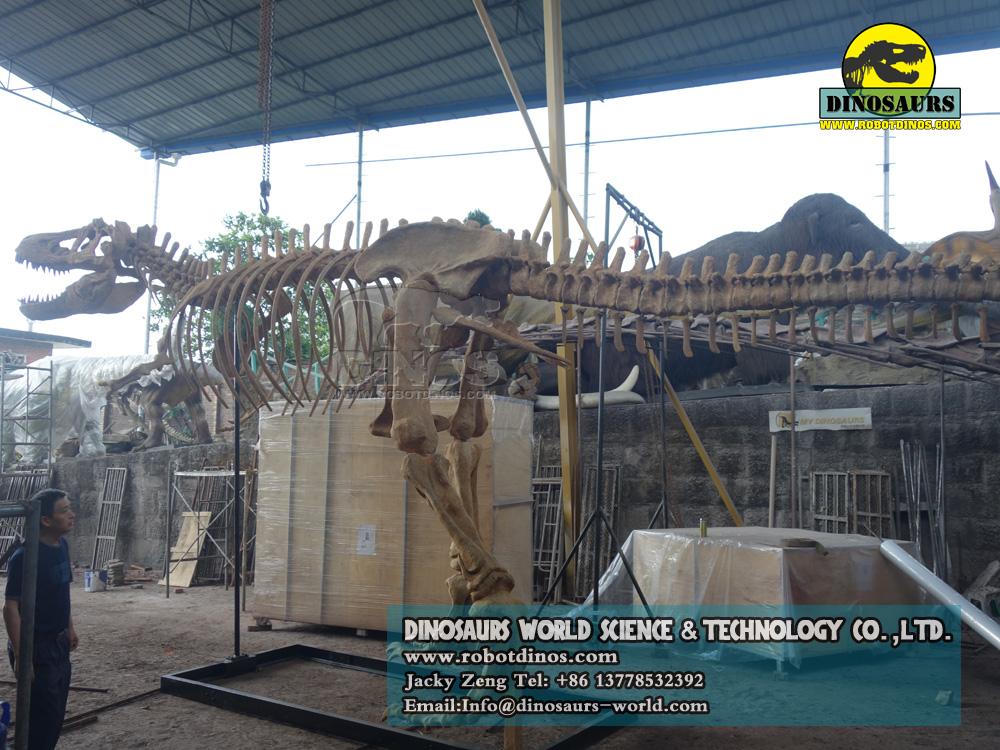 DWS016-1 dinosaur skeleton replica