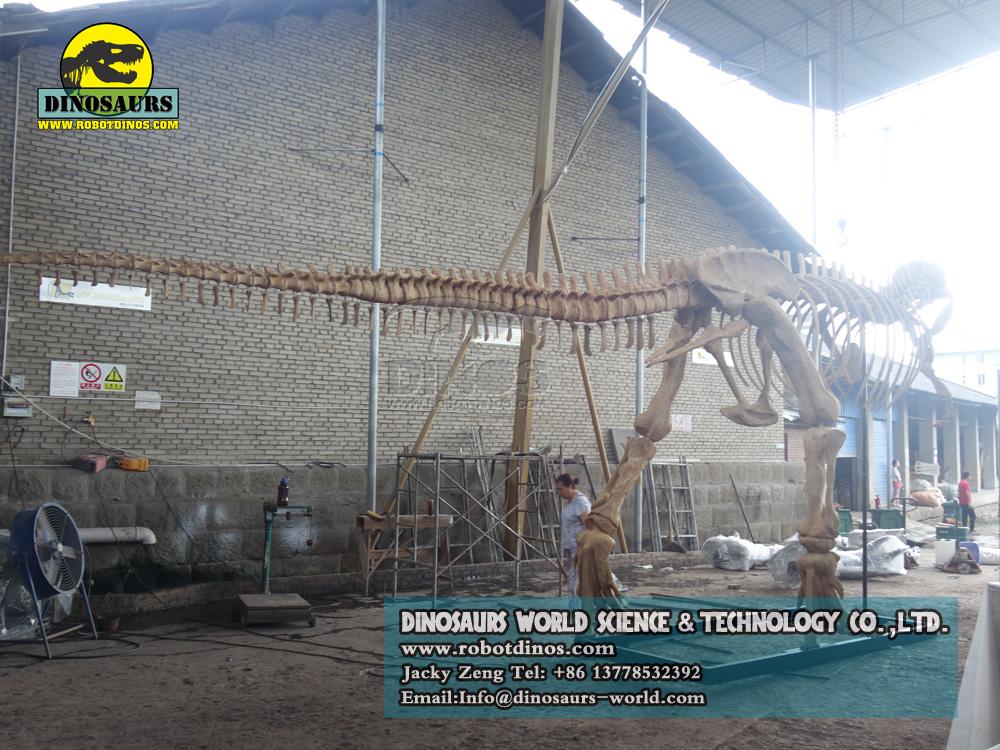 DWS016-1 T-Rex Skeleton