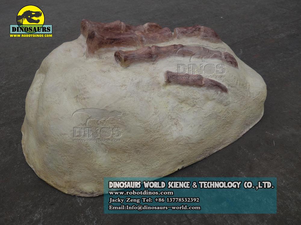 Toe Bone of Plateosaurus Replica