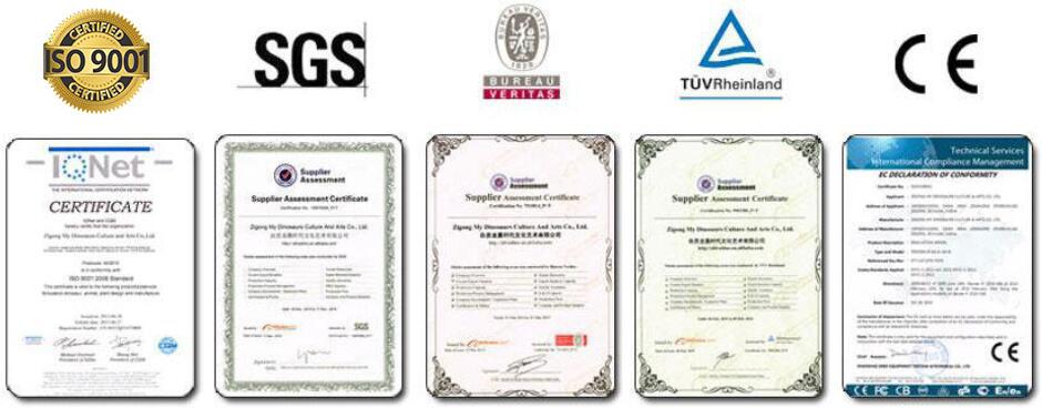 Kvalifikacija i certifikacija