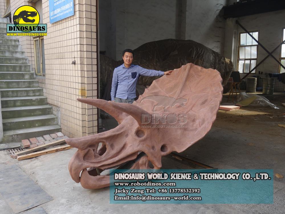 SR16 Triceratops Skull (1)
