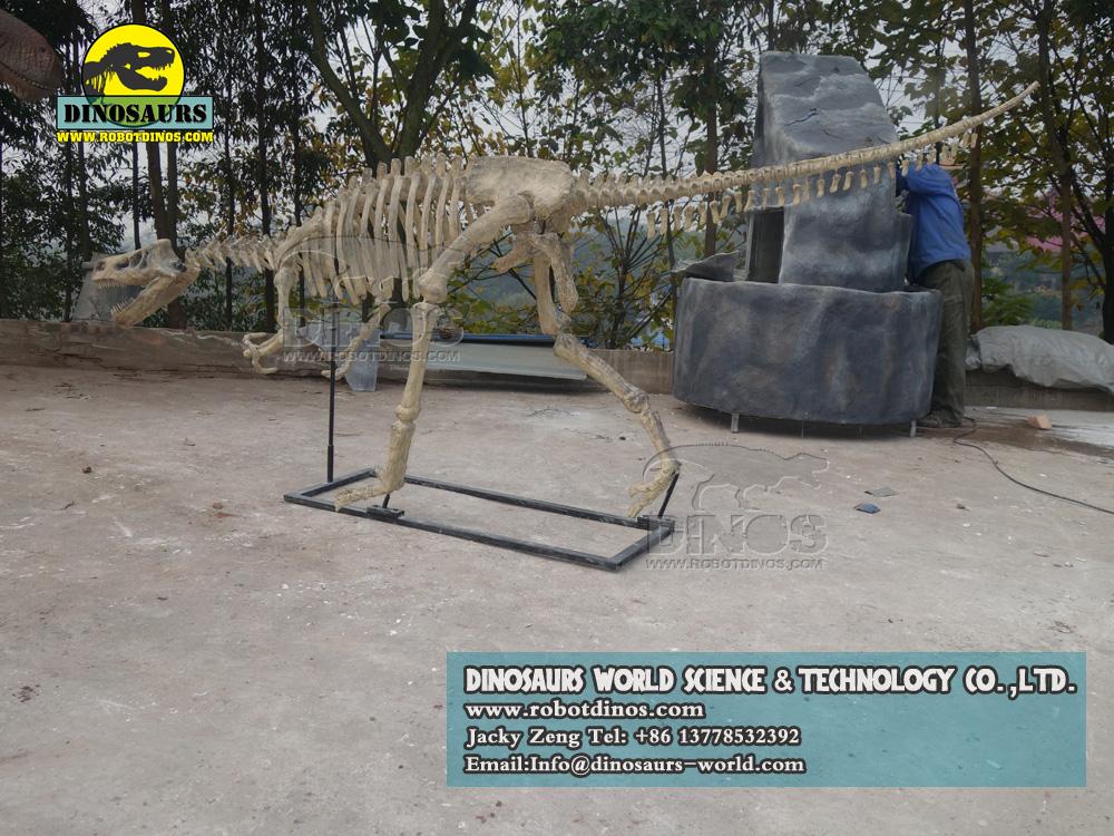 outdoor playground dinosaur exhibition velociraptor skeleton