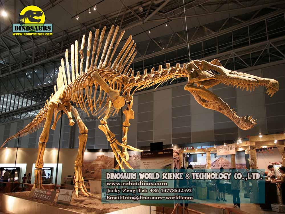DWD023-7 Dinossauros Animatrônicos Jovens Tiranossauros Rex