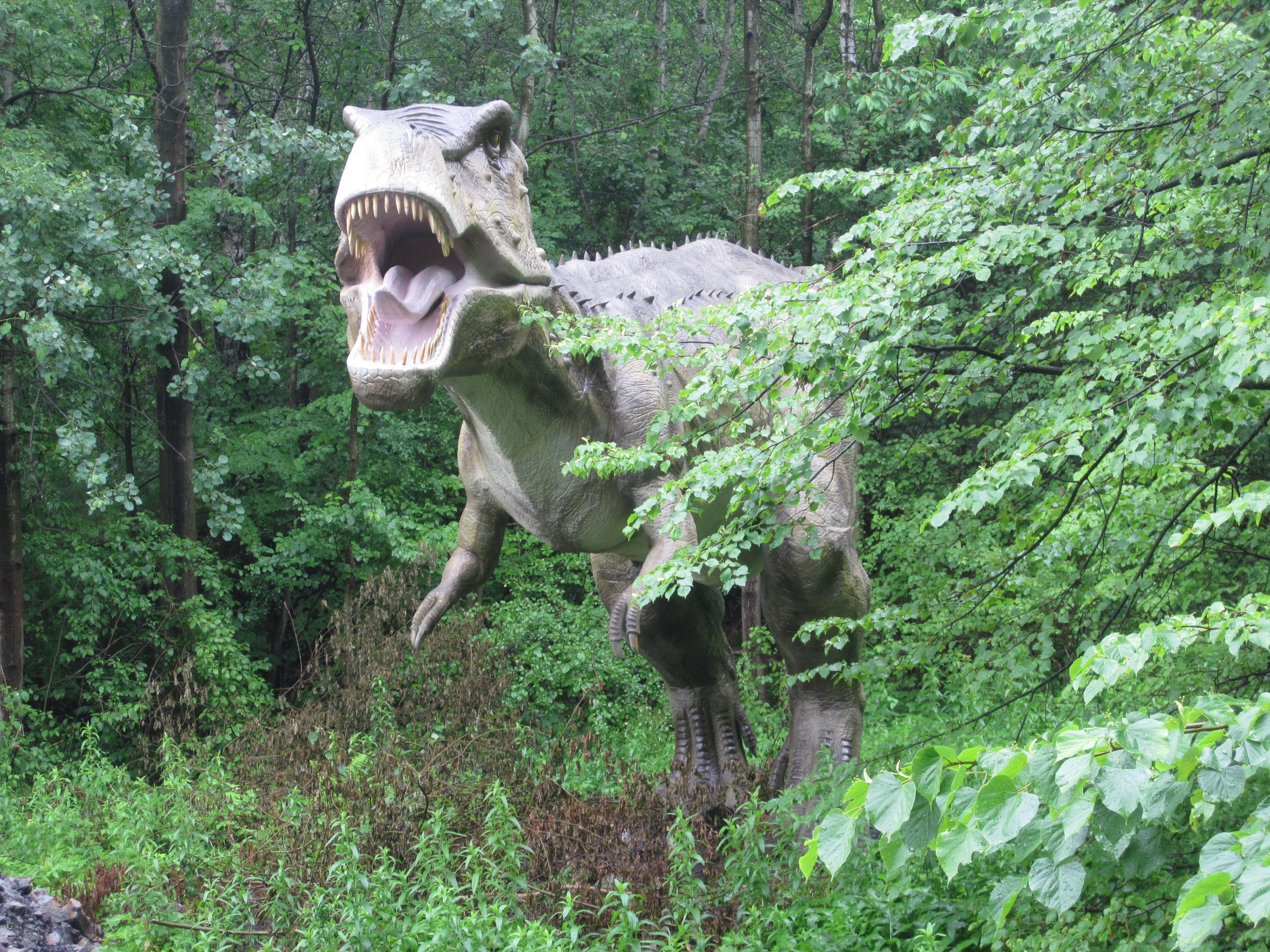 DWD1340 霸王龙 Tyrannosaurus rex