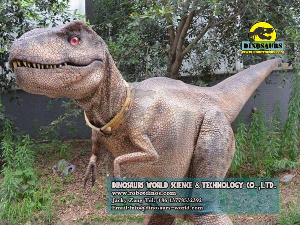 Details about  /Dinosaur Costumes Children/'s Cosplay Fursuit Animal Prosthetic Leg Walking Doll