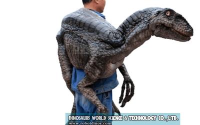 DWH007 Prodaje se ramena lutka za mladi dinosaur Velociraptor