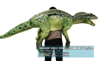 DWH0011 Prodaje se ramena lutka za mladi dinosaur Velociraptor